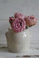 Franse-gres-pot-*Verkocht*